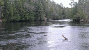 riverfae