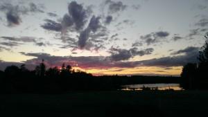sunsetfeatherfootfarm